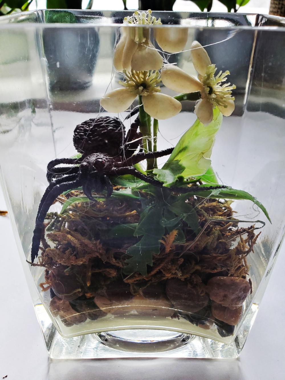 How to make a creepy terrarium