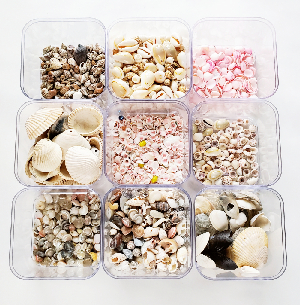 DIY Shell Picture Frame materials
