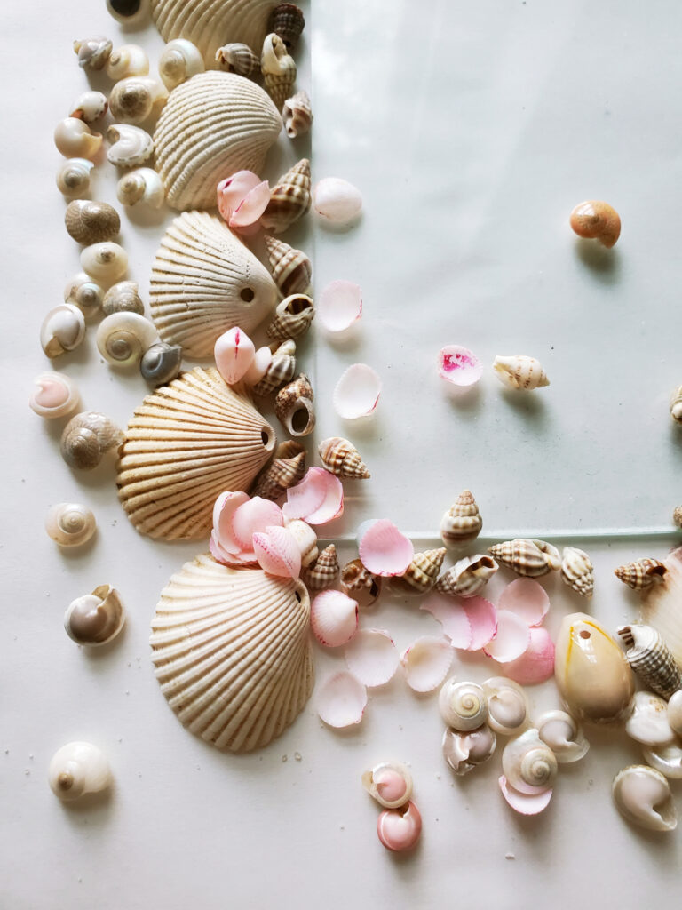 DIY Shell Picture Frame